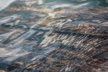 Adaptive Fluidity - The Need to Be Like Water - You Wealth Revolution