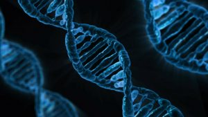 DNA Begins As a Quantum Wave, The New Science