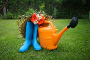 The Good-Mood Garden: Crops That Fight Depression