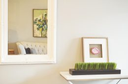 How Decluttering Your Surroundings Can Help Reduce Anxiety