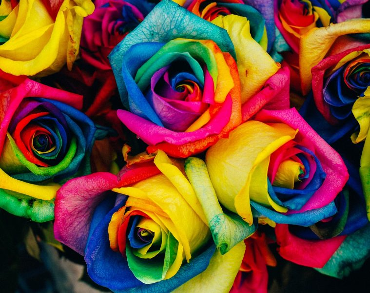 Healthy Boundaries - NATURE'S WISDOM TIP: HOW TO LIVE... LIKE A ROSE!
