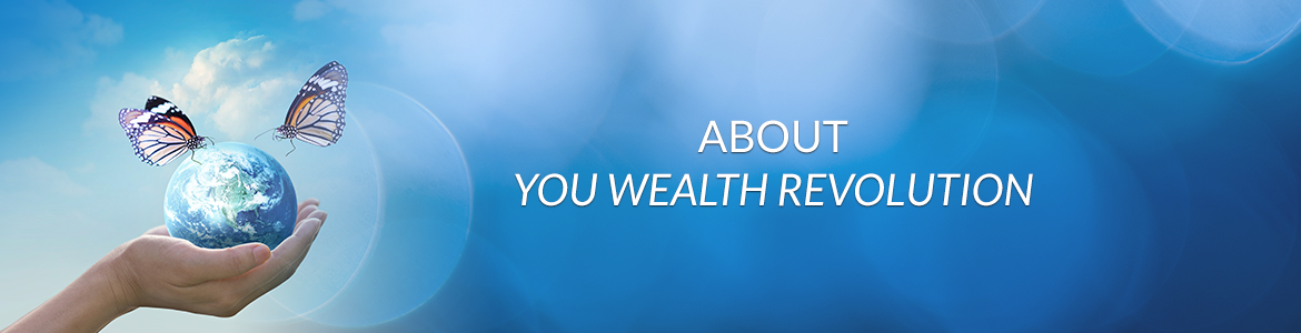 About You Wealth Revolution