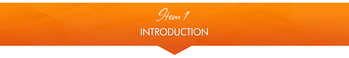Item 1: Introduction — The Basics of Now Healing