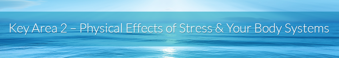 Key Area 2 — Physical Effects of Stress & Your Body Systems