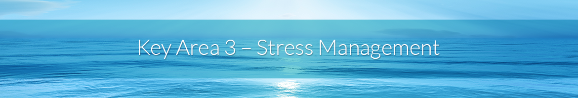 Key Area 3 — Stress Management