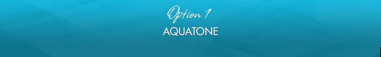 Option 1: Aquatone