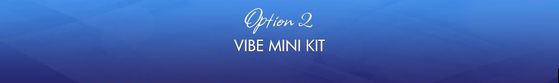 Option 2: Vibe Mini Kit