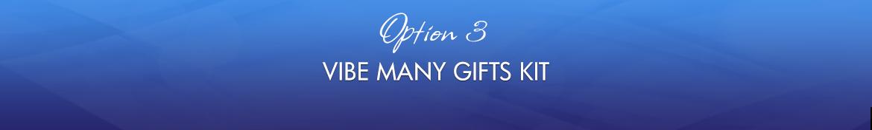 Option 3: Vibe Many Gifts Kit