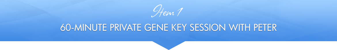Item 1: 60-Minute Private Gene Key Session with Peter