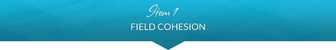 Item 1: Field Cohesion