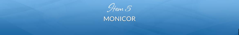 Item 5: Monicor