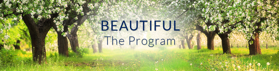 Beautiful — The Program
