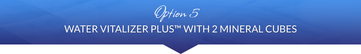 Option 5: 1 Water Vitalizer Plus™ with 2 Mineral Cubes