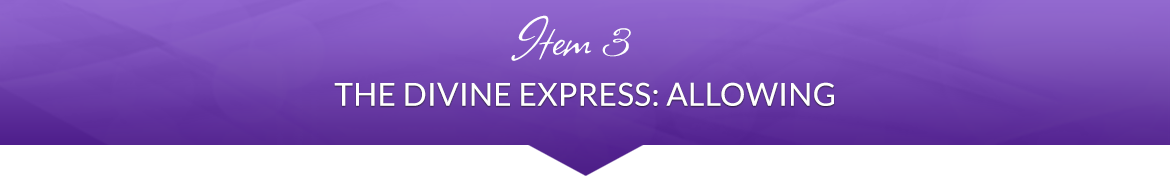 Item 3: The Divine Express: Allowing
