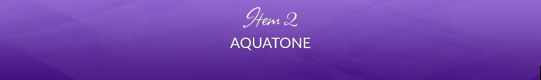 Item 2: Aquatone