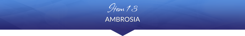 Item 13: Ambrosia
