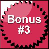 Bonus #3