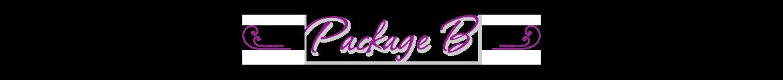 Package B
