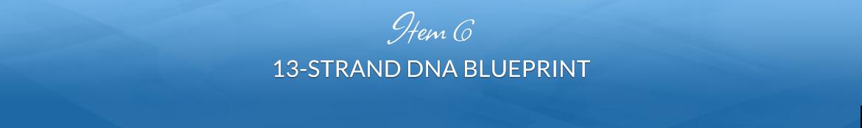Item 6: 13-Strand DNA Blueprint