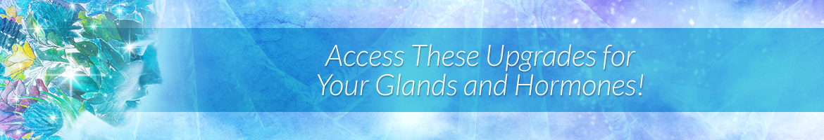 Access These Upgrades for Your Glands and Hormones!